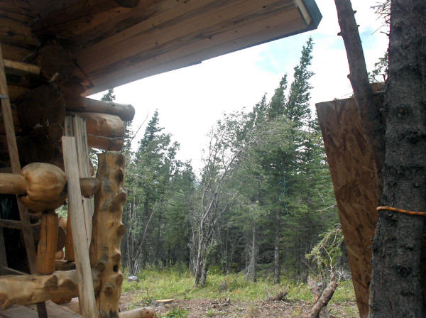 Life At Our Log Cabin In Alaska