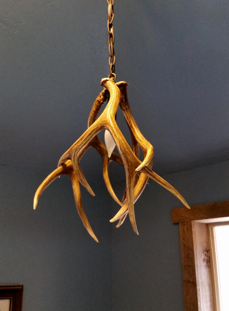 Custom antler pendant lighting made from moose caribou elk and small mule deer antler pendant light with three mule deer antlers aloadofball Choice Image