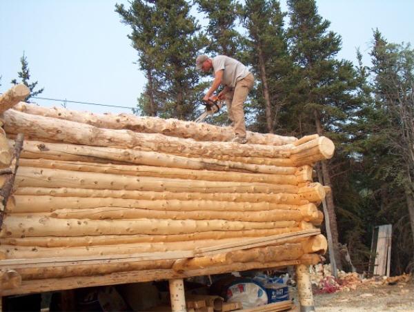 Do It Yourself Alaska Cabin Build