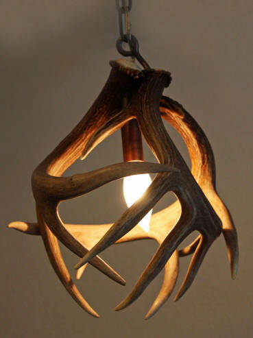 Custom antler pendant lighting made from moose caribou elk and whitetail antler pendant aloadofball Choice Image