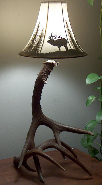 antler lamp bases made from mule deer and whitetail deer antlers