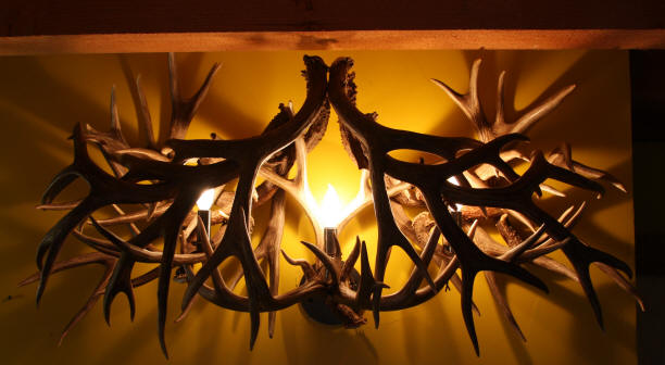 Unique antler chandeliers in northwest montana custom mule deer antler vanity light aloadofball Images