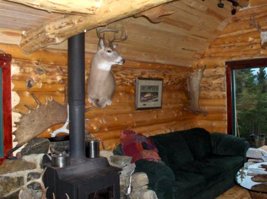your cabin peterson stay forest alaska awesome cabins b service will nature in these make ak lake