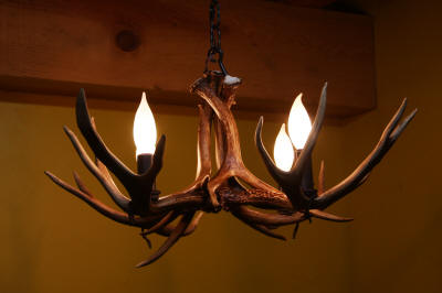 Unique antler chandeliers in northwest montana single tier mule deer antler chandelier mozeypictures Gallery